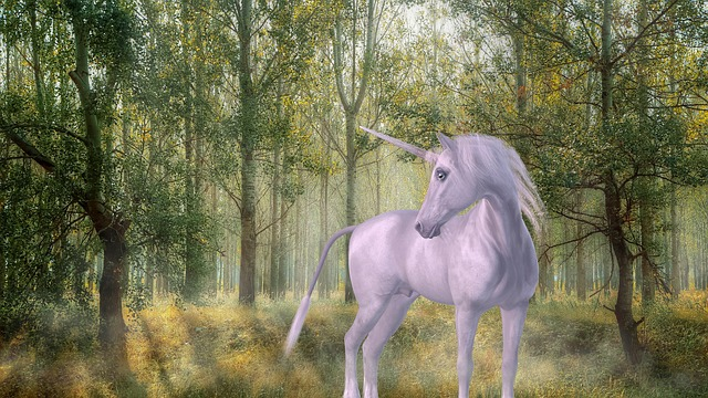 unicorn-1981219_640